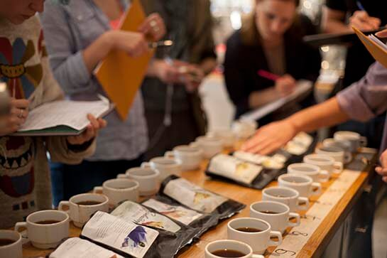 Tasting of coffee